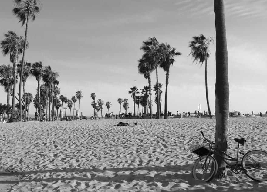 Venice Beach (4)