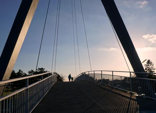 sunny-side